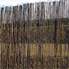 Scape 1 8 X 3 0m Bamboo Screen Bunnings Warehouse