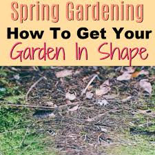 how to get your garden in shape