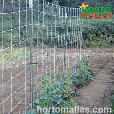 How To Build A Cucumber Support Trellis For Orchards