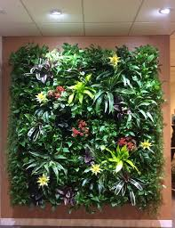 green living walls plant wall