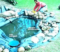 garden fish pond designs bridge design