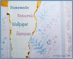 natural homemade wallpaper remover and