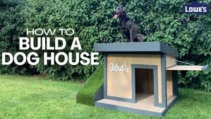 Install An Electronic Dog Fence