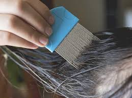 does hair dye kill lice or lice eggs