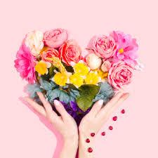 صور ورود رقيقة وخلفيات مميزة من الورود الطبيعية جاهزة للتحميل