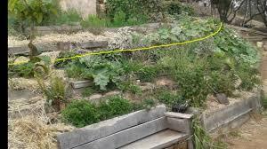 landscaping ideas for sloped backyard