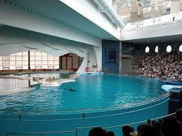 national aquarium to move dolphins out