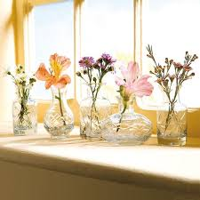 glass vases in differing unique shapes