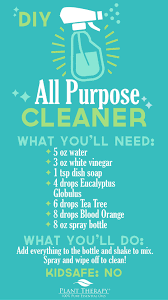 all purpose cleaner diy