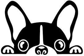 Amazon Com Doran Boston Terrier Peeking Sticker Vinyl Car Decoration Window Wall Sticker Laptop Decal Peep Animal Decorative Stickers 2 Packs Black Kitchen Dining
