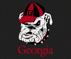 Uga Georgia Bulldogs Window Decal The Red Zone Athens Ga