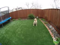 Pin By Anita Eicher Pack On Dog Stuff New House Ideas Dog Backyard Dog Friendly Backyard Diy Dog Fence