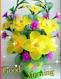 whatsapp status good morning flowers