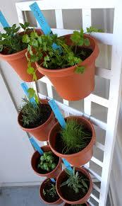 diy space saving herb garden