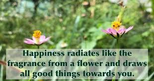 quotes bahasa inggris about flower dan artinya ketik surat
