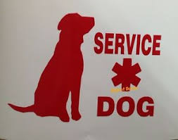 Service Dog Decal Rescue Ptsd Search Car Truck Suv Wall Window Sticker Ebay