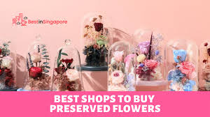 best preserved flowers in singapore