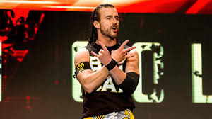Adam Cole & Kyle O'Reilly Reportedly Set To Be The Top Babyfaces On NXT -  Details