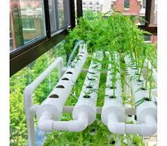 hydroponic system indoor garden grow