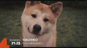 Promo: Hachiko - Il tuo migliore amico Video