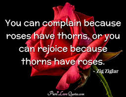 you can complain because roses have thorns or you can rejoice
