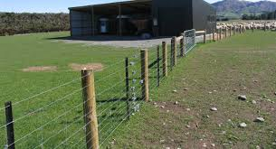 Wire Netting Y Posts Goldpine