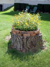 how to put a tree stump in your yard to