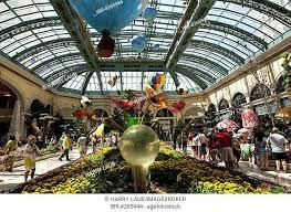 bellagio conservatory botanical garden