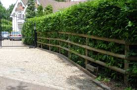 Post And Rail Fencing Post And Rail Fence Garden Bridge Outdoor Structures