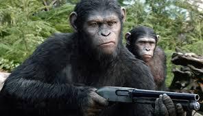scimmia – COMITATO ANTIEVOLUZIONISTA