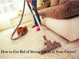 get rid of a bad smell in my carpet