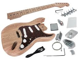 diy electric guitar kit with alder