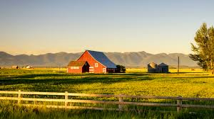 the best rural internet providers for