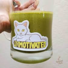 Motivated Cat Sticker Lilycli