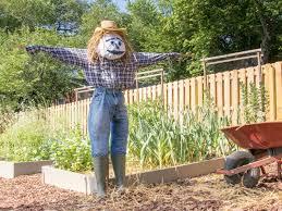 How to Make a Scarecrow | how-tos | DIY