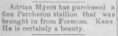 Adrian Myers purchases stallion - Newspapers.com