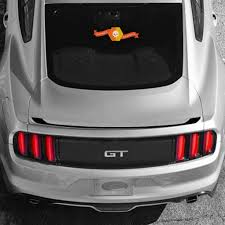 Ford Mustang 2015 2020 Lip Spoiler Overlay Accent Vinyl Decal Stripe