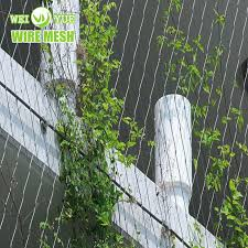 China Aisi316 X Tend Wire Rope Plant Trellis Stainless Steel Wire Rope Mesh For Climbing Plants China Stainless Steel Rope Mesh Steel Cable Mesh