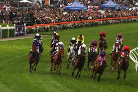 Cox Plate day preview and tips ...