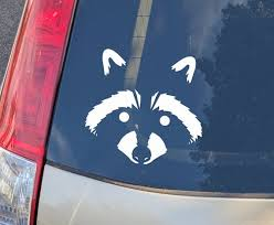 Raccoon Face Decal Raccoon Vinyl Decal Bumper Sticker For Etsy