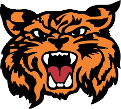 4 5in X 4in Orange Black Wildcat Bumper Sticker Decal Vinyl Window Decals Stickers Stickertalk