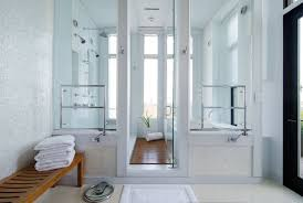 spa like bathroom design transitional