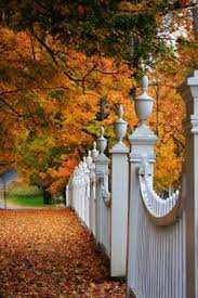 100 I Want A White Picket Fence Ideas In 2020 White Picket Fence Picket Fence Fence