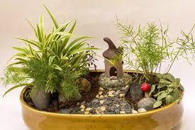 chiguru the miniature garden