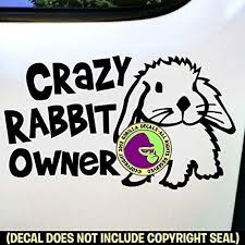 Amazon Com Crazy Rabbit Owner Cute Bunny Vinyl Decal Sticker B Handmade