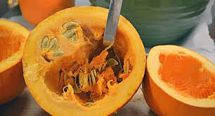 pumpkin puree recipe made from scratch