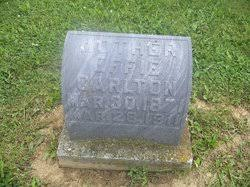 Effie Greene Carlton (1862-1911) - Find A Grave Memorial