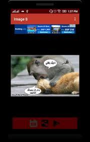 صور مضحكة حيوانات فى اللحظة المناسبة For Android Apk Download