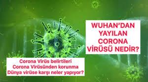 CORONA VİRÜSÜ DÜNYA'YA HIZLA YAYILIYOR! #türkiye #coronavirüs #çin ...