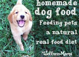 homemade dog food real food for pets
